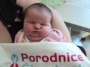 Julie Jíchová, Řimice narozena 2. března míra 50 cm, váha 3670 g