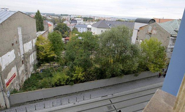 Proluka vDenisově ulici zarostlá stromy a keři