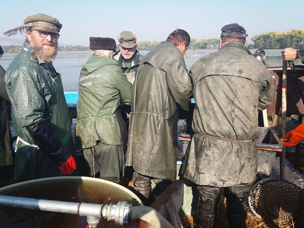 Tradiční výlov Šumvaldského rybníka přilákal v sobotu 13. října několik stovek lidí.