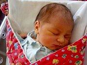 Julie Superata, Lužice, narozena 22. září ve Šternberku, míra 48 cm, váha 3430 g