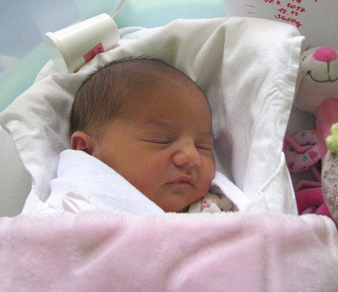 Ema Tomíčková, Tršice, narozena 18. dubna v Olomouci, míra 50 cm, váha 3650 g