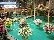 Letní Flora 2016