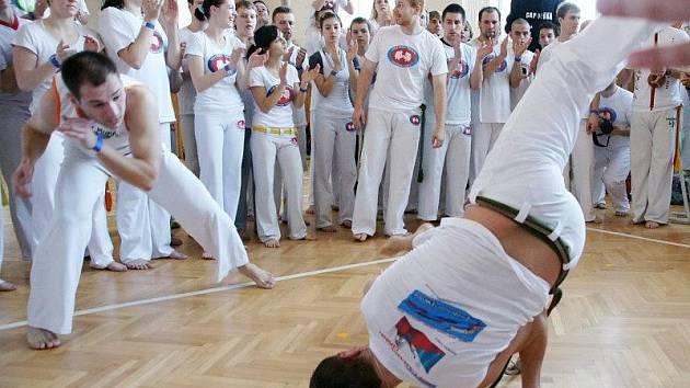 Setkání vyznavačů brazilské capoeiry v olomoucké sokolovně