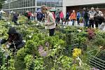 Zahradnické trhy na výstavišti Flora v Olomouci, 23. května 2021
