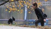 Podzimní momentka. Ilustrační foto