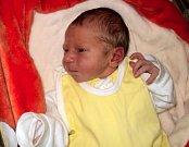 Dominik Šuba, Bohuňovice, narozen 26. června ve Šternberku, míra 49 cm, váha 2770 g