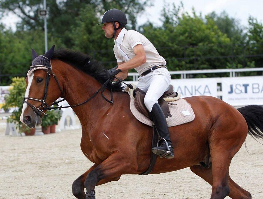 Jan Cigan. Světový pohár CSI*** Olomouc. Závody pro šestileté a sedmileté koně.