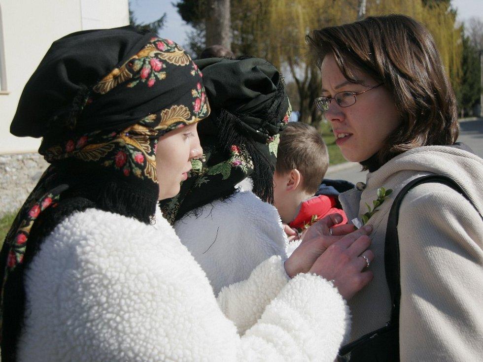 Matičky a mládenci rozdávají přítomným voničky na klopy.