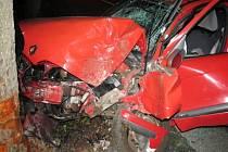 Renault s opilým šoférem boural v Hrubé Vodě, spolujezdec se těžce zranil