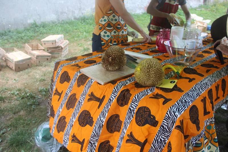 Akce Okoštuj Afriku v Olmiku