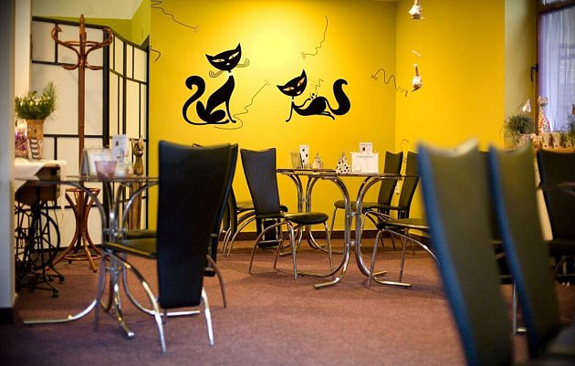 Kavárna Umlsné kočky