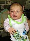 Valerie Dvorská, Moravský Beroun, narozena 21. ledna, míra 48 cm, váha 2920 g