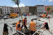 Sázení nových stromů v rámci rekonstrukce Dolního náměstí v Olomouci. Zajímavostí je automatické zavlažování