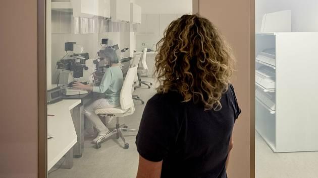 Klinika asistované reprodukce. Ilustrační foto