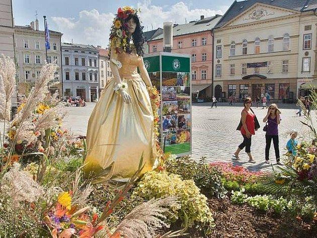 """""""Modelka"""" ve zlatých šatech láká na Horním náměstí v Olomouci na letní etapu výstavy Flora"""