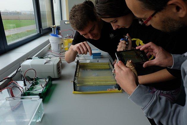 Veřejnost má možnost nahlédnout do mikroskopického světa Centra strukturní a funkční genomiky rostlin