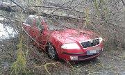Na auto v Huzové kvůli silnému větru spadl strom