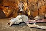Dóm mrtvých v Mladečských jeskyních s expozicií pohřebního rituálu pravěkých kromaňonců