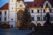 Na Horním náměstí v Olomouci se rozsvítil vánoční strom ráno v neděli 29. listopadu 2020