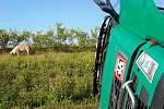 Nehoda kamionu s prasaty u Stříbrnice na Přerovsku
