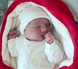 Dita Pirliomov, Šternberk, narozena 9. listopadu ve Šternberku, míra 51 cm, váha 3710 g