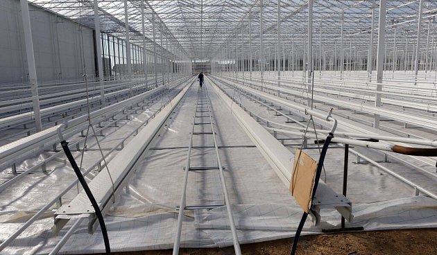 Skleník pro hydroponické pěstování rajčat vHaňovicích