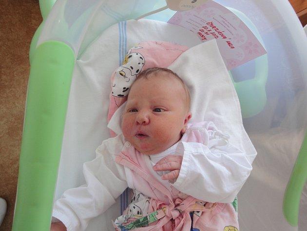 Nela Čtvrtlíková, Velká Bystřice, narozena 20. července v Olomouci, míra 53 cm, váha 4030 g.