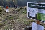 Sázet nový les přijely 3 tisíce lidí.