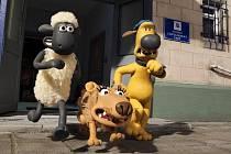 Ovečka Shaun ve filmu