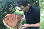 Jak se měří komáří kalamita, ukazuje Libor Mazánek z Krajské hygienické stanice Olomouckého kraje. Na snímku počítá množství komárů v obci Střeň