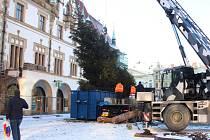 Kácení vánočního stromu na Horním náměstí v Olomouci