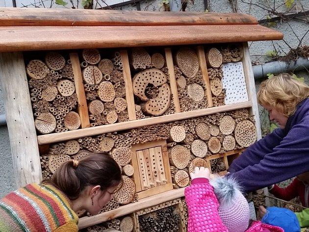 Botanická zahrada UP v Olomouci otevřela hotel pro hmyz a pozorovací úl