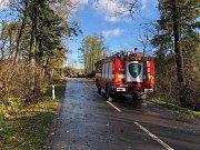 V okolí Jívové, Dolan, Domašova nad Bystřicí a Libavé řešili hasiči od rána desítky stromů na komunikacích.
