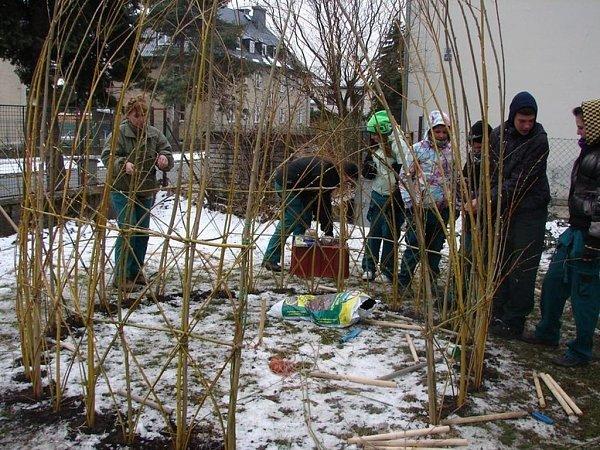 Nové vrbové chýše zdobí zahradu Mateřské školy Komenského ve Šternberku na Olomoucku