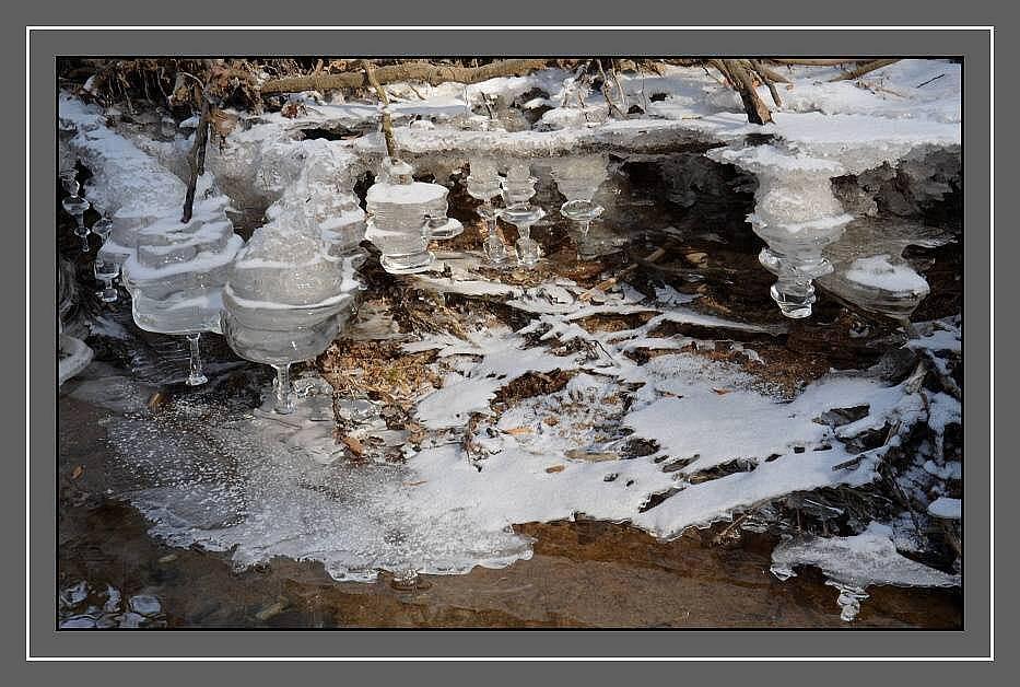 Ledová krása na řece Moravě u Hynkova. 8.2.2012. Foto: Jaroslav Doležel