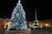 Nejkrásnější vánoční strom v Olomouckém kraji podle ankety Deníku - Mohelnice, náměstí Svobody