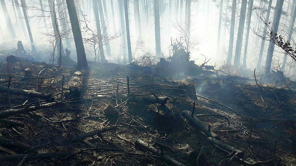 Hasiči během pondělí 6. dubna likvidovali požáry na devíti místech Olomouckého kraje. Požár u Úsobrna.