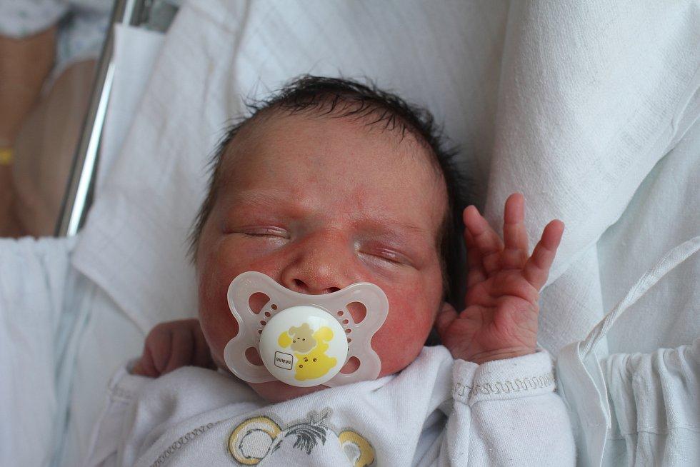 Kristýna Vintrová, Prostějov, narozena 28. července, míra 50 cm, váha 3200 g