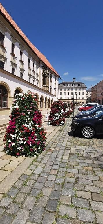 Toulky po městě Olomouc.