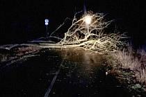 Následky silného větru v noci z 23. na 24. února 2020 v Olomouckém kraji