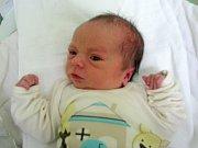 Adam Koudelka, Olomouc, narozen 27. dubna v Olomouci, váha 2860 g