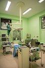 Okna operačních sálů Kliniky otorinolaryngologie a chirurgie hlavy a krku Fakultní nemocnice Olomouc zdobí díky výtvarným schopnostem lékařky kliniky Michaely Uhrové rozměrné malby, které zpříjemňují personálu pracovní čas a pacientům dodávají klid.