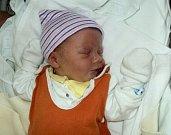 Pavel Hanzal, Šternberk, narozen 12. září ve Šternberku, míra 50 cm, váha 3350 g