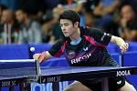 Kvalifikační boje na mezinárodním turnaji ve stolním tenise CZECH OPEN v Olomouci.