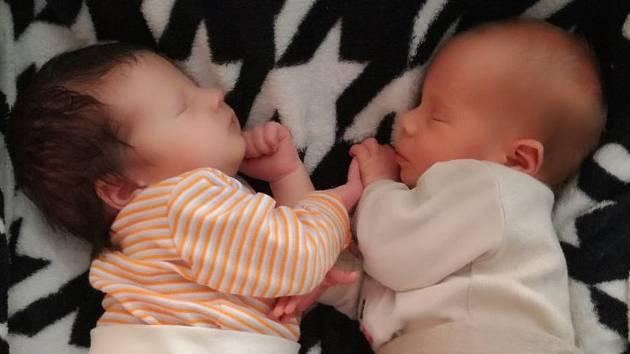 Laura a Lucas Hrdinovi, Zábřeh, narozeni 23. srpna 2018, míra 49 a 47 cm, váha 2960 a 2390 g