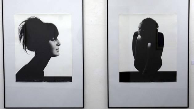 Výstava Čtvrtý rozměr v Galerie města Olomouce