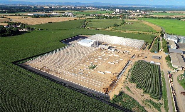 Skleníky orozhloze tří hektarů na pěstování zeleniny buduje zemědělské družstvo vHaňovicích.