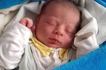 Radomír Nedoma, narozen 8. února ve Šternberku, míra 50cm,váha 3550 g