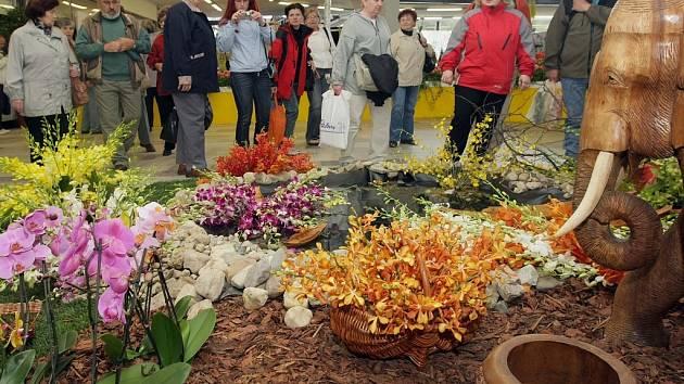 Jarní výstava Flora Olomouc v pavilonu A