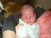 Dominik Škorňa, Tvrdkov, narozen 30. října ve Šternberku, míra 47 cm, váha 2450 g